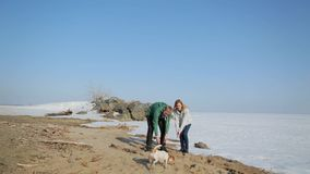 Couple walking along the shore of a frozen lake with a dog stock footage