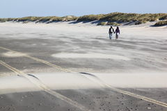 Couple walking on the Ameland Island Beach, Holland Stock Image