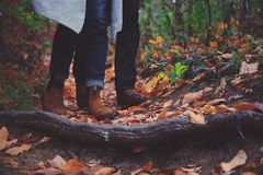 Couple walking on autumn leaves Stock Photo