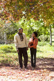 Couple walking in autumn park, holding hands, smiling Royalty Free Stock Image