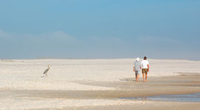 Couple walking on beach. Panoramic rear view of couple walking on sandy beach watched by bird; blue sky background Royalty Free Stock Photo