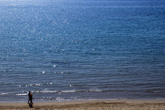Couple walking on the beach. A couple enjoying a romantic walk on the beach stock photo
