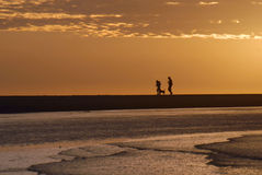 Couple walking on the beach with dog at sunrise Stock Images