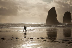 Couple walking on beach at Haystack Rock on the Oregon coast Royalty Free Stock Photos