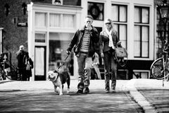 Couple walking with a dog, Amsterdam. Couple walking with a dog on the streets of Amsterdam. Black and white. Netherlands Stock Photo
