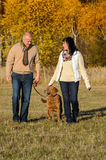 Couple walking dog in autumn sunny park Stock Image