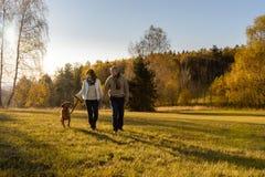 Couple walking dog autumn sunset landscape Royalty Free Stock Image