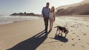 Couple walking a dog on the beach royalty free stock images