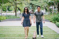 Couple Walking With Dog on Green Grass royalty free stock image