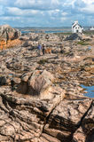 Couple walking with dog on the stone seashore Stock Image