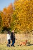 Couple walking dog in sunny autumn countryside Stock Photo
