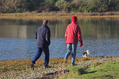 Couple walking dogs Royalty Free Stock Photos