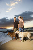 Couple Walking Dogs at the Beach Royalty Free Stock Image