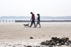 A couple walking the dogs on the beach royalty free stock photo