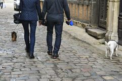 Couple walking dogs. In the medieval part of city Stock Image