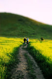 Couple Walking Down a Country Road Royalty Free Stock Photos