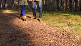 Couple walking through the forest. Couple walking through the autumn forest at sunset stock footage