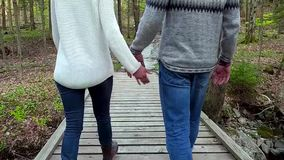 Couple walking in forest, holding hands stock video footage