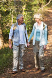 Couple walking forest Royalty Free Stock Photography