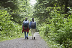 Couple Walking On Forest Road Stock Photos