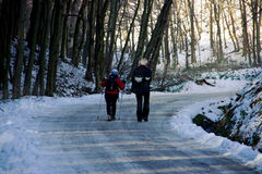 Couple is Walking on Forest Road Stock Photos
