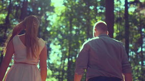 Couple walking in forest on sunny day. Rear view of couple walking in forest. Man and woman are conversing in woodland. Affectionate partners are spending stock video