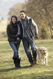 Couple walking golden retriever in the country Stock Images