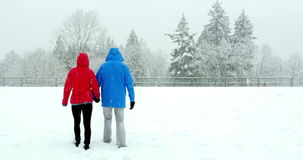 Couple walking hand in hand in snowy landscape stock footage
