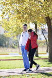 Couple walking Stock Image