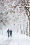 Couple walking during heavy snowstorm Royalty Free Stock Photos