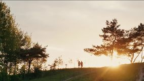 Couple walking on a hill holding hands at beautiful sunset in nature. Sun rays shine. Natural landscape, trees. Slow mo stock footage