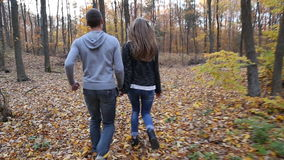 Couple walking in nature stock video
