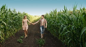 Couple walking on nature Stock Photos