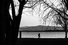 A couple walking near a lake shore at sunset, with trees silhouettes. A couple walking near a lake shore at sunset with trees silhouettes Stock Images