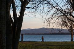 A couple walking near a lake shore at sunset, with trees silhouettes and warm colors. A couple walking near a lake shore at sunset with trees silhouettes and Stock Image