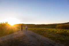 Couple walking over the French vineyard royalty free stock photography