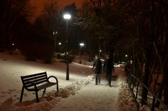 Couple walking on park alley in the night royalty free stock photos