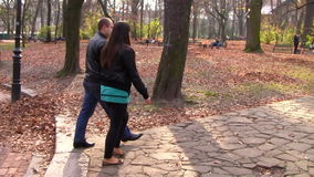 Couple walking in the park in autumn stock video