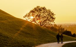 Couple walking in the park. Couple walking in the park in Caucasian city. Sunset background royalty free stock image