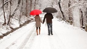 Couple walking in the park stock footage