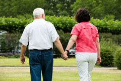Couple Walking In Park. Rear View Of Senior Couple Walking In Park Holding Hands stock images