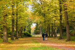 Couple walking on path in autumn, Netherlands Royalty Free Stock Images