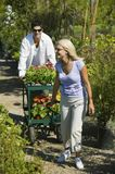 Couple walking on path in plant nursery pulling cart of flowers Royalty Free Stock Photo