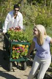 Couple walking on path in plant nursery pulling cart of flowers Royalty Free Stock Images