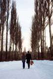 Couple walking through the poplar alley royalty free stock image