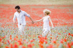 Couple walking in poppy field holding hands
