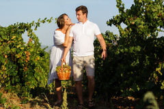 Couple walking in between rows of vines Royalty Free Stock Images
