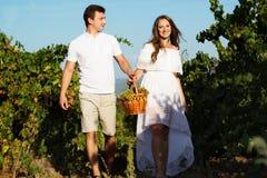 Couple walking in between rows of vines Stock Image