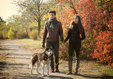Couple walking their dog Royalty Free Stock Photography