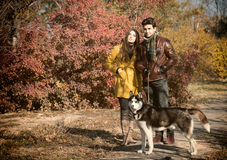 Couple walking their dog Stock Photography